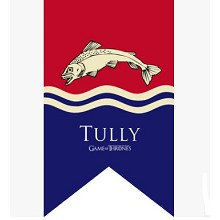 Game of Thrones TULLY cos flag